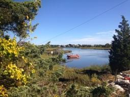 Lakes & Ponds